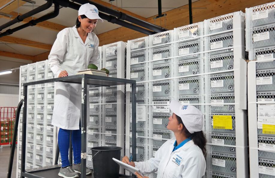Qualitätskontrolle Lebensmittel Verarbeitung
